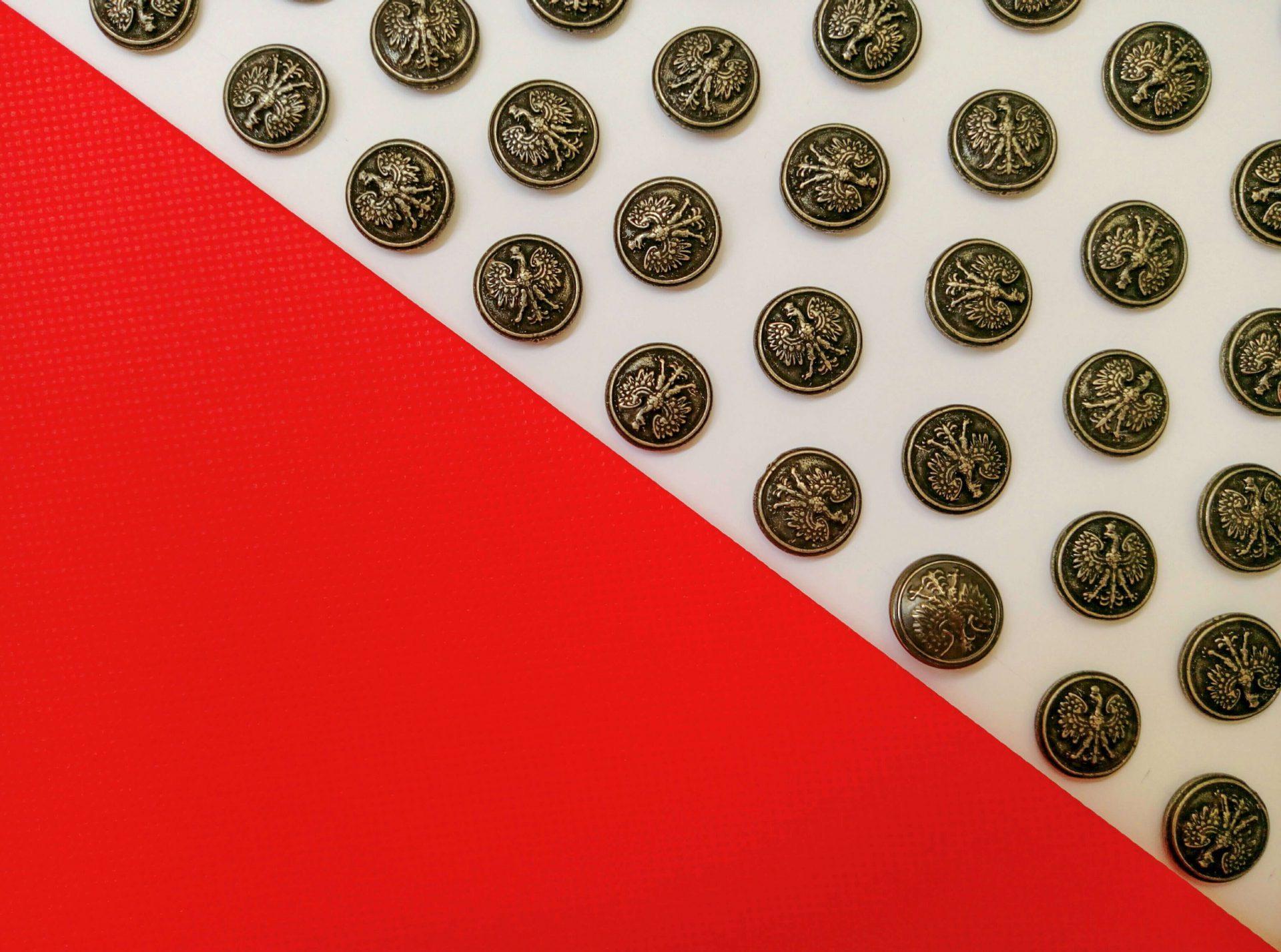 Zdjęcie przedstawia guziki katyńskie na tle biało czerwonej flagi. Fot. Agata Dziemian